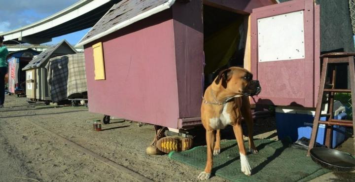 berkeley artist creates mobile homes for the homeless artist creates mobile homes